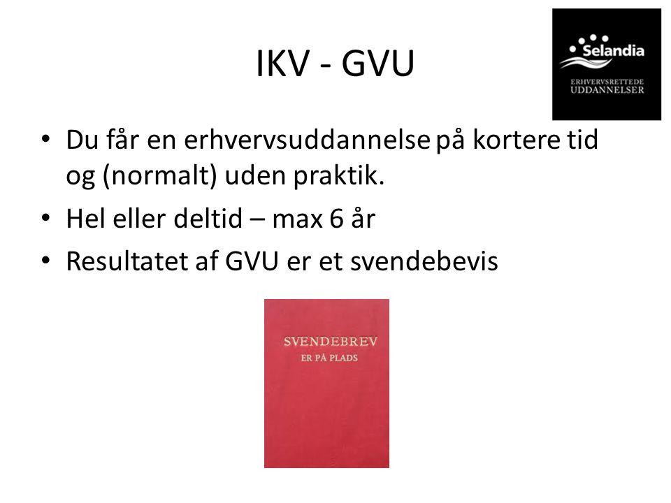 IKV - GVU Du får en erhvervsuddannelse på kortere tid og (normalt) uden praktik. Hel eller deltid – max 6 år.