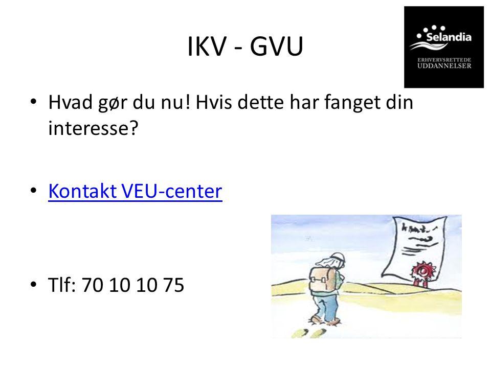 IKV - GVU Hvad gør du nu! Hvis dette har fanget din interesse