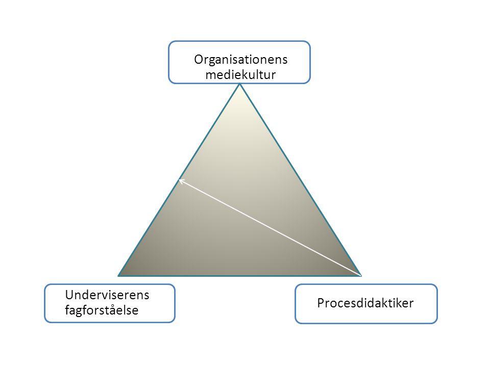 Organisationens mediekultur