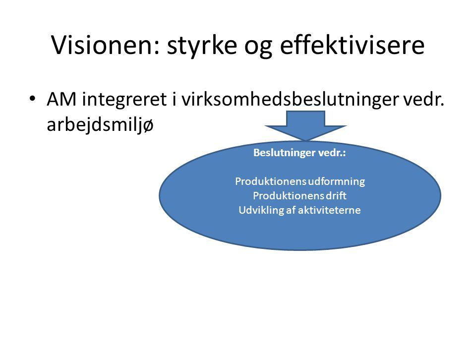 Visionen: styrke og effektivisere