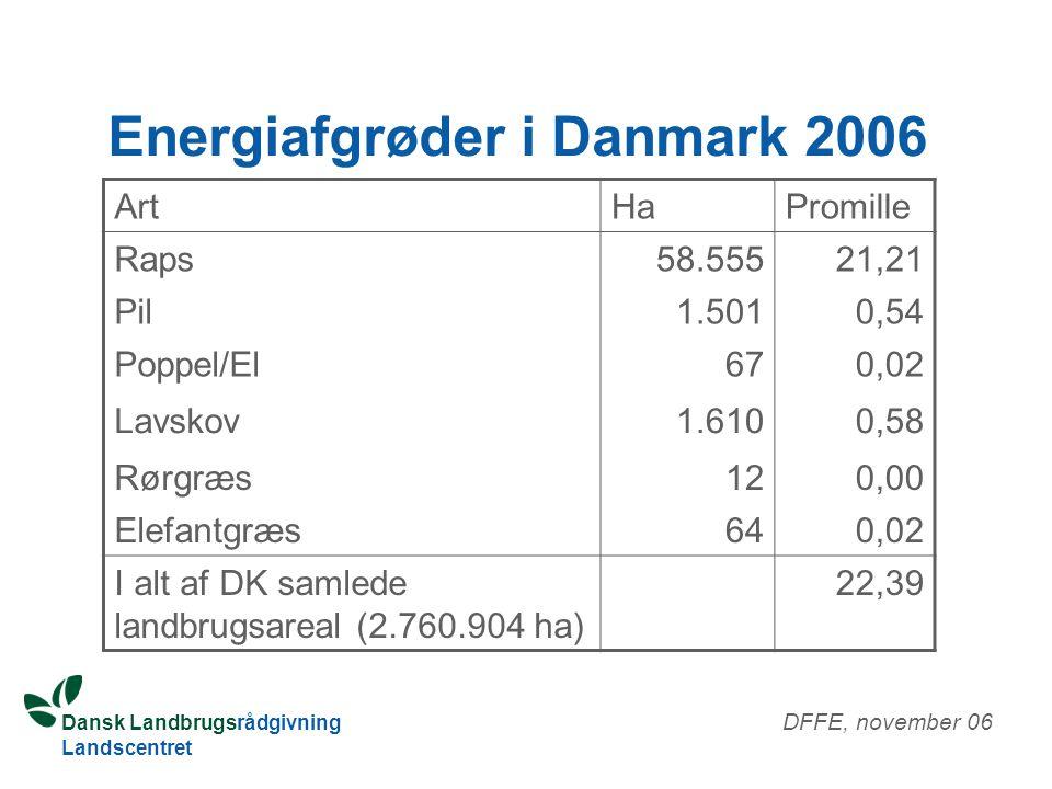 Energiafgrøder i Danmark 2006