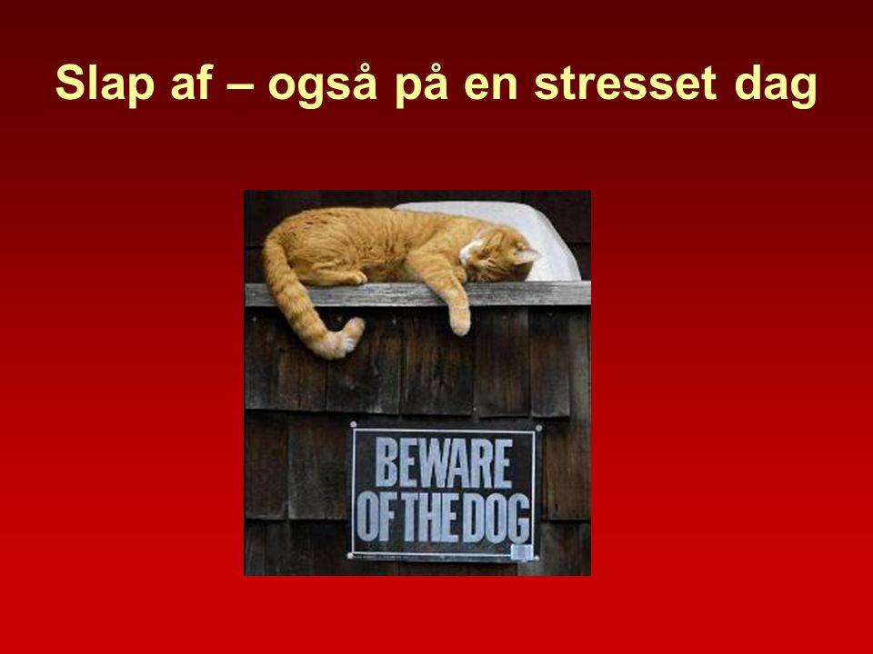 Slap af – også på en stresset dag