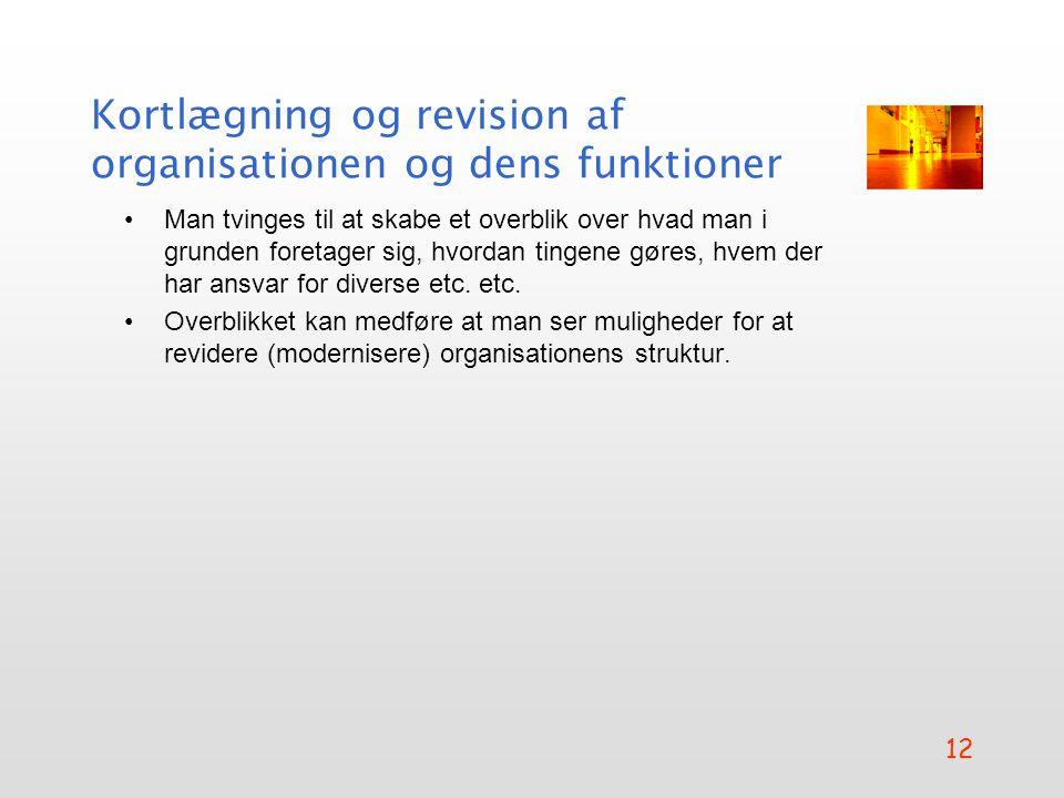 Kortlægning og revision af organisationen og dens funktioner