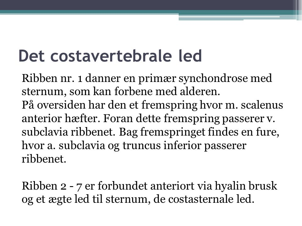 Det costavertebrale led