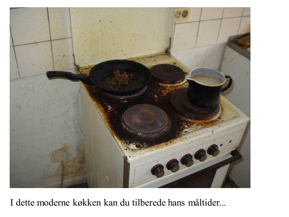 I dette moderne køkken kan du tilberede hans måltider...