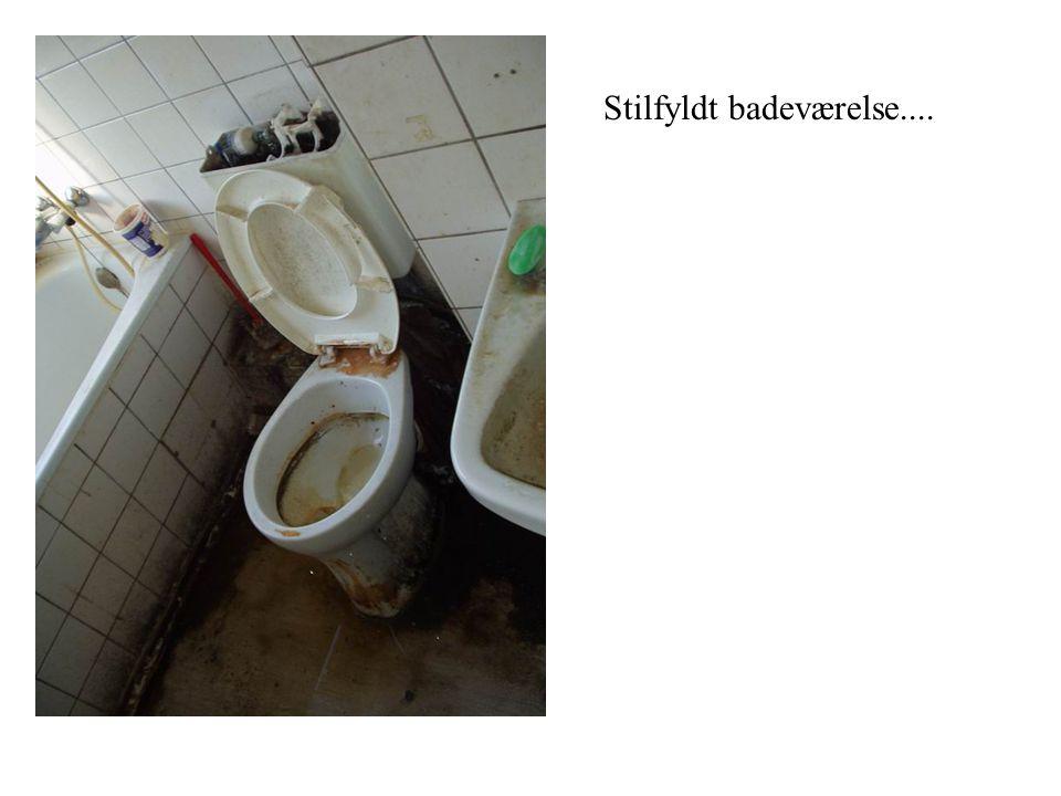 Stilfyldt badeværelse....