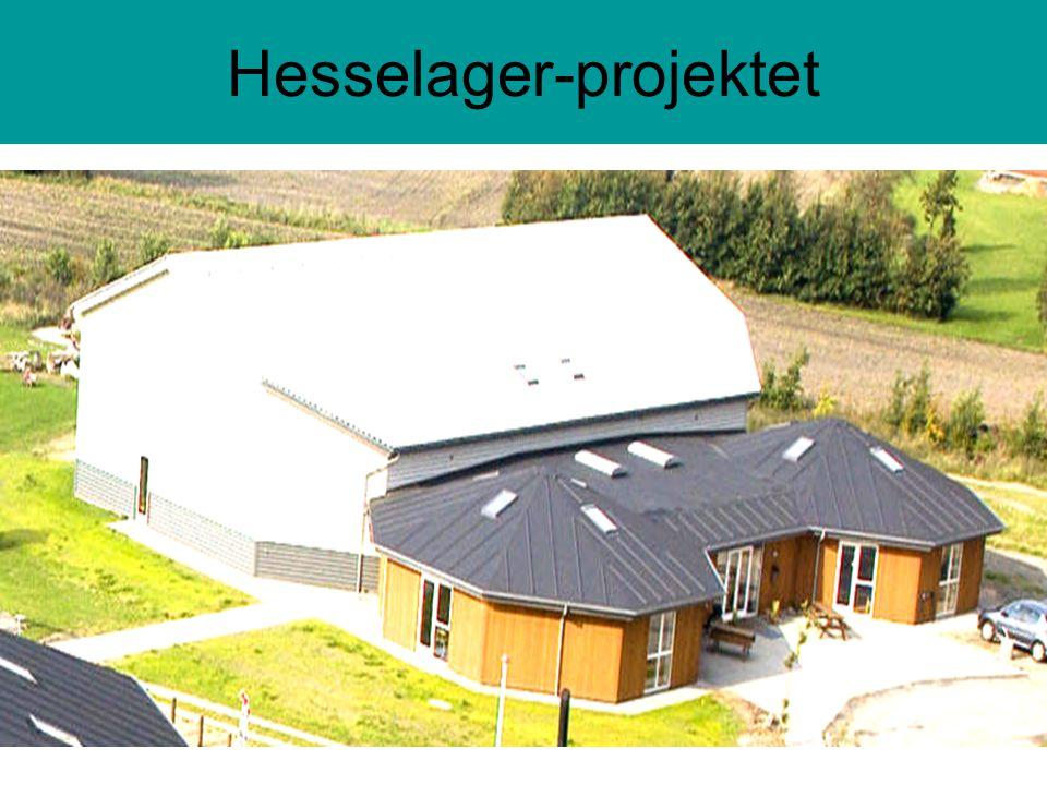 Hesselager-projektet