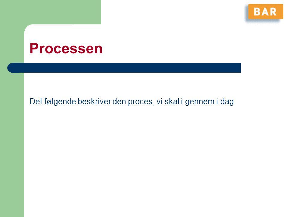 Processen Det følgende beskriver den proces, vi skal i gennem i dag.