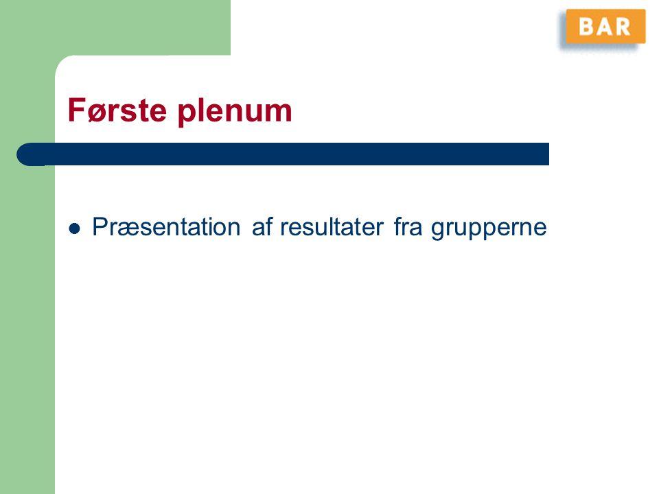Første plenum Præsentation af resultater fra grupperne