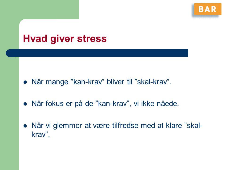 Hvad giver stress Når mange kan-krav bliver til skal-krav .