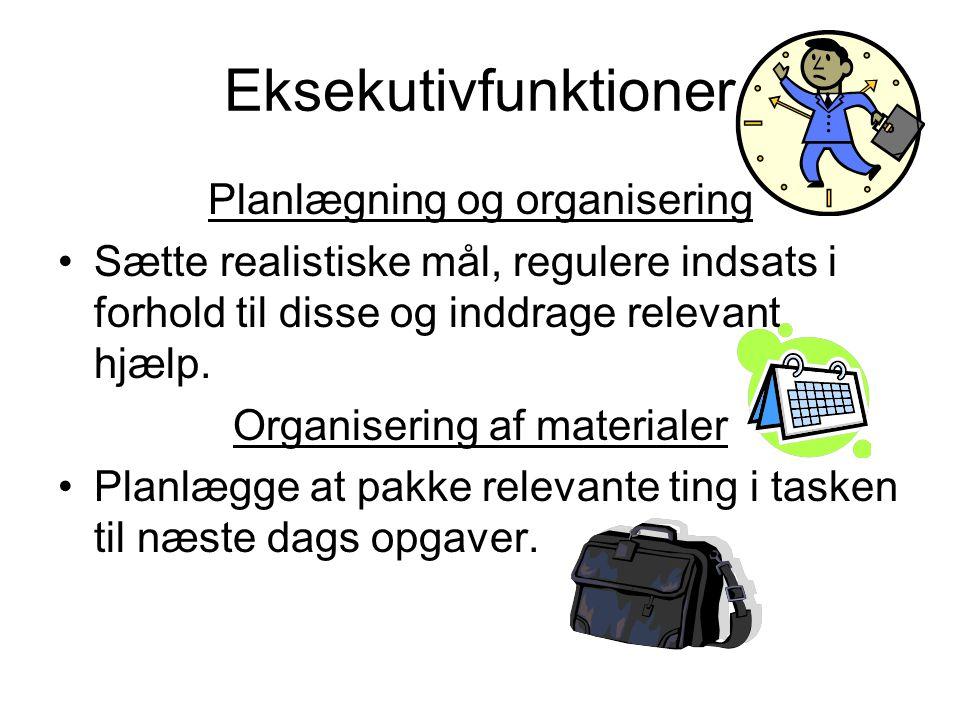 Eksekutivfunktioner Planlægning og organisering