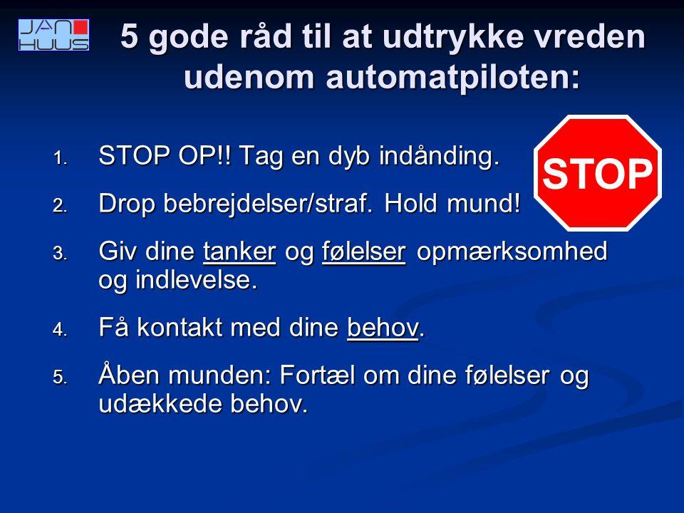 5 gode råd til at udtrykke vreden udenom automatpiloten: