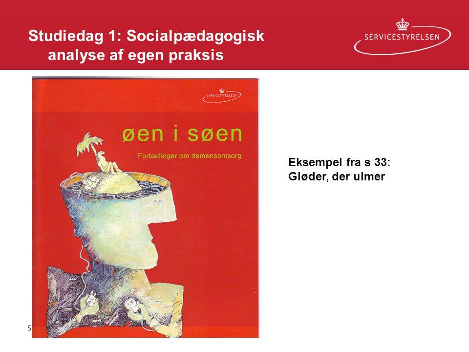 Studiedag 1: Socialpædagogisk analyse af egen praksis