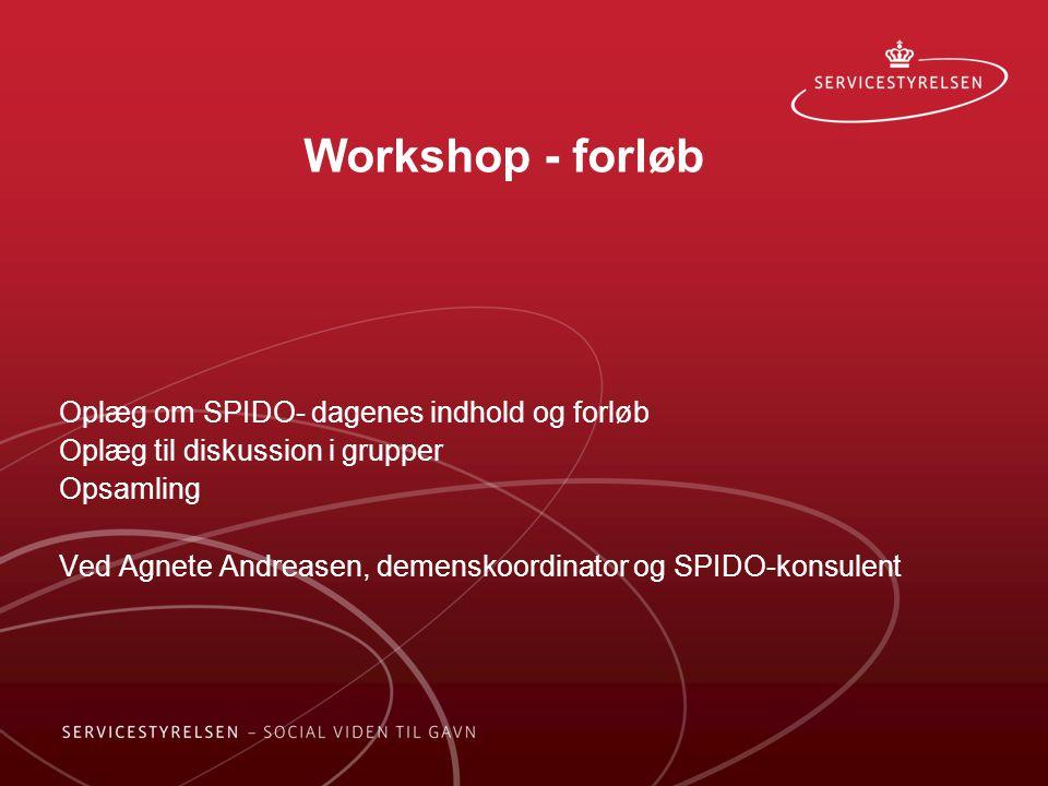 Workshop - forløb Oplæg om SPIDO- dagenes indhold og forløb