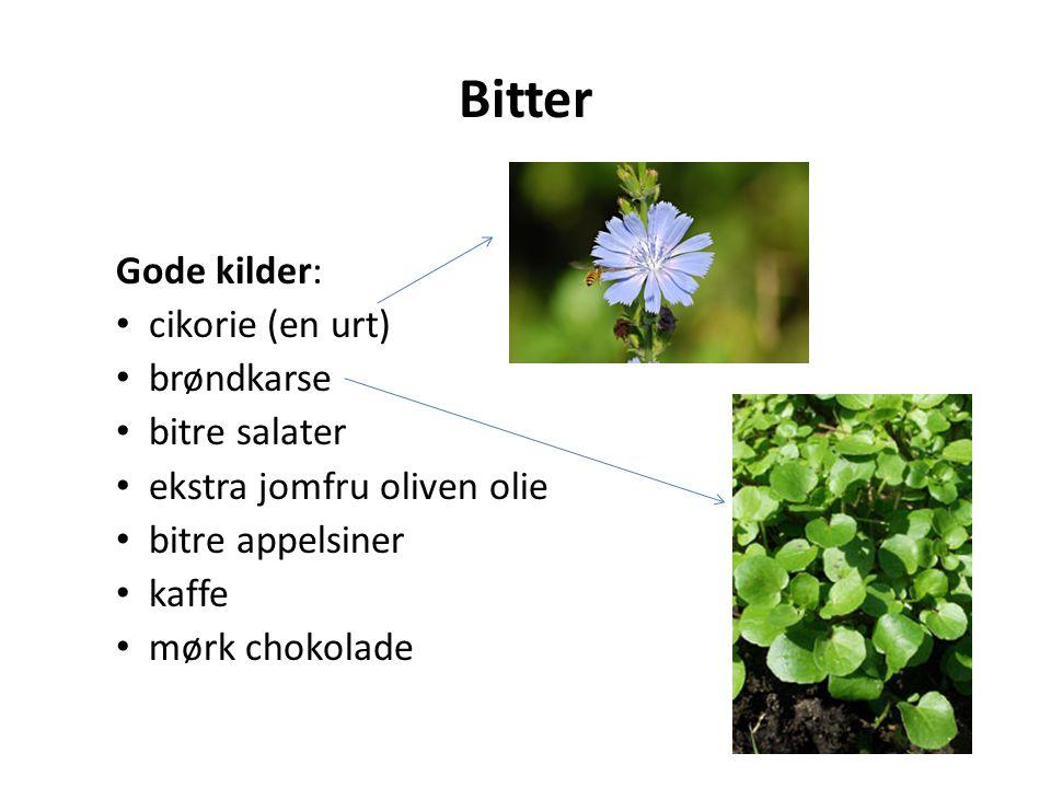 Bitter Gode kilder: cikorie (en urt) brøndkarse bitre salater