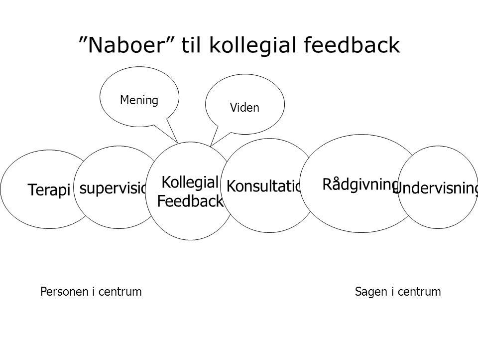 Naboer til kollegial feedback