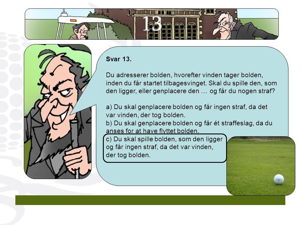 13 Svar 13.