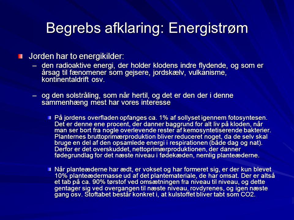 Begrebs afklaring: Energistrøm