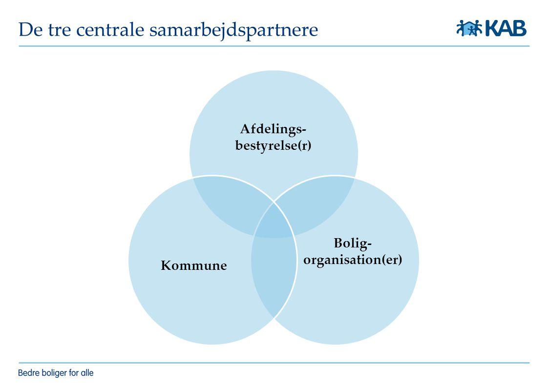 De tre centrale samarbejdspartnere