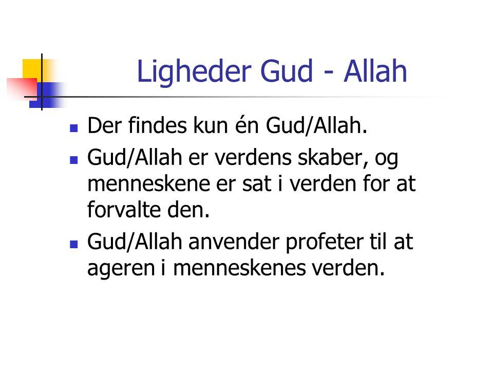 Ligheder Gud - Allah Der findes kun én Gud/Allah.