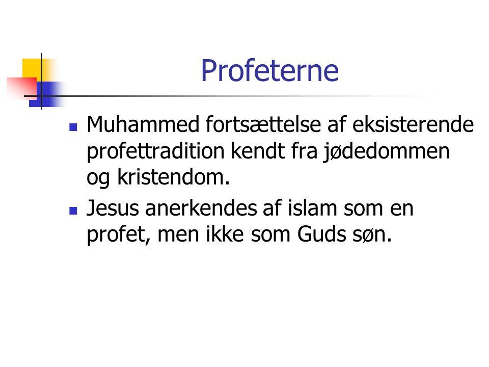 Profeterne Muhammed fortsættelse af eksisterende profettradition kendt fra jødedommen og kristendom.