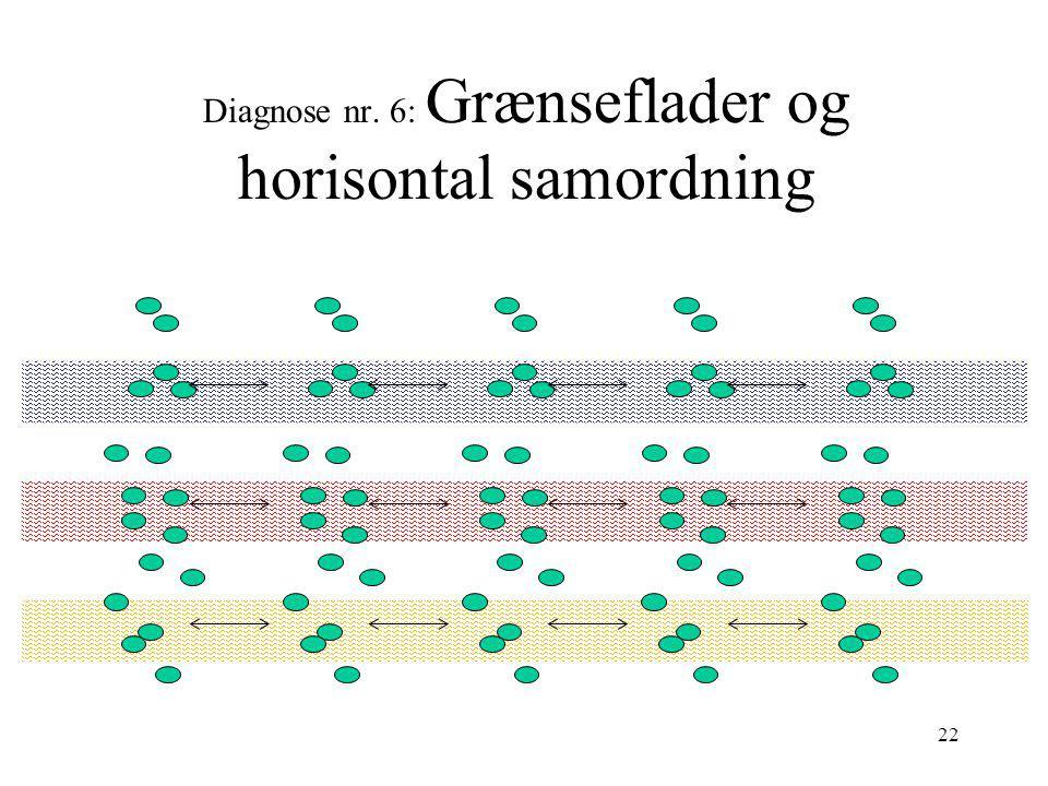 Diagnose nr. 6: Grænseflader og horisontal samordning
