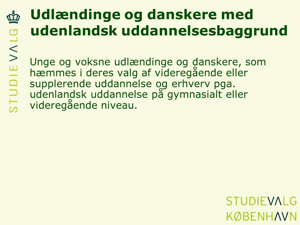 Udlændinge og danskere med udenlandsk uddannelsesbaggrund