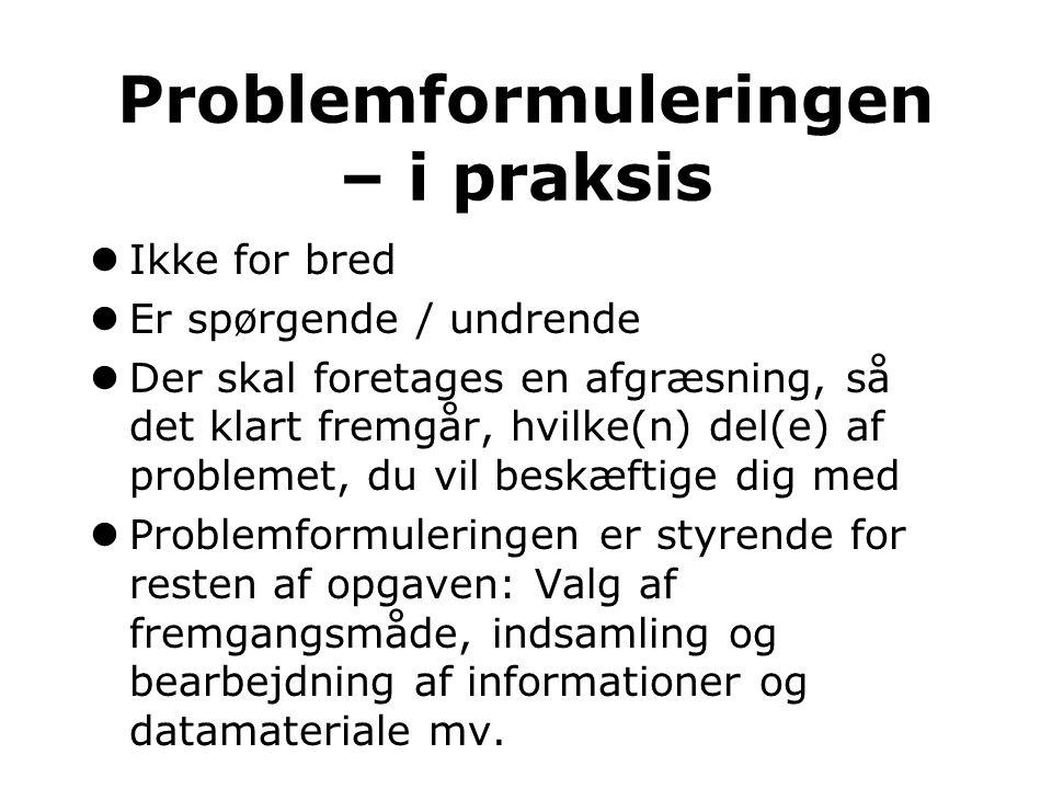 Problemformuleringen – i praksis
