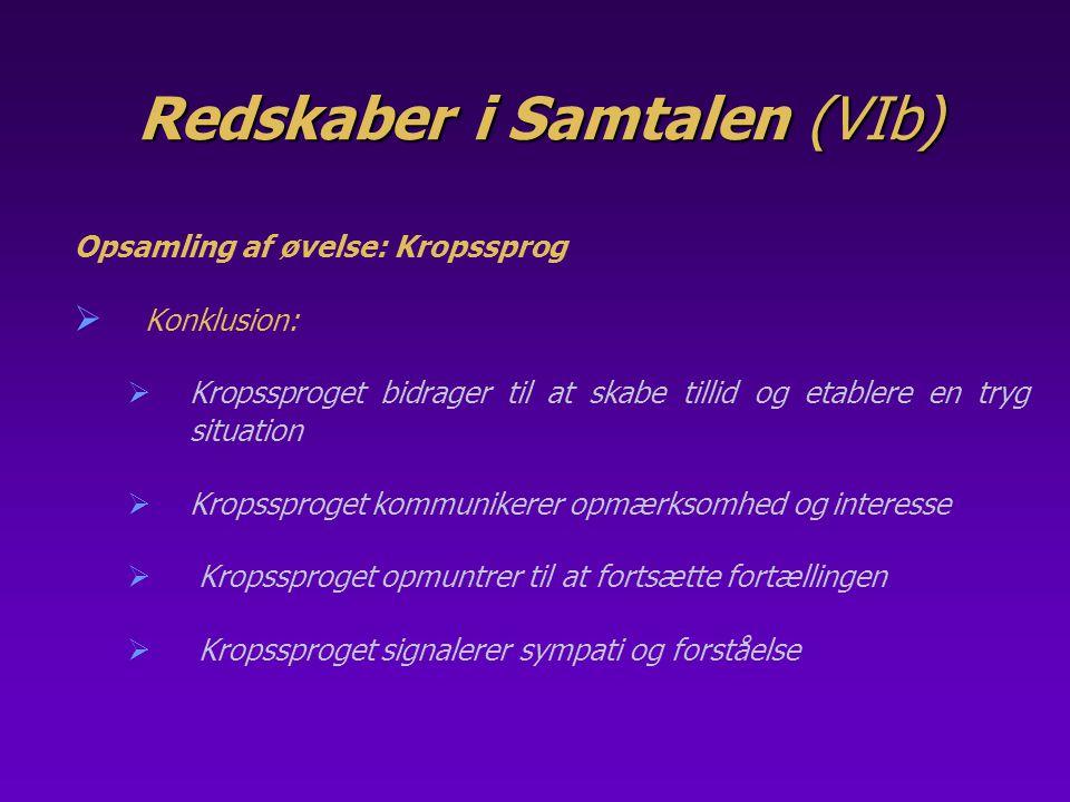 Redskaber i Samtalen (VIb)