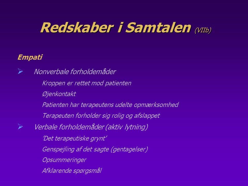 Redskaber i Samtalen (VIIb)