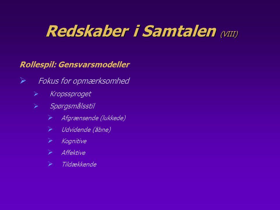 Redskaber i Samtalen (VIII)