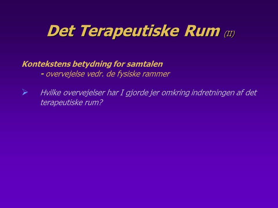 Det Terapeutiske Rum (II)