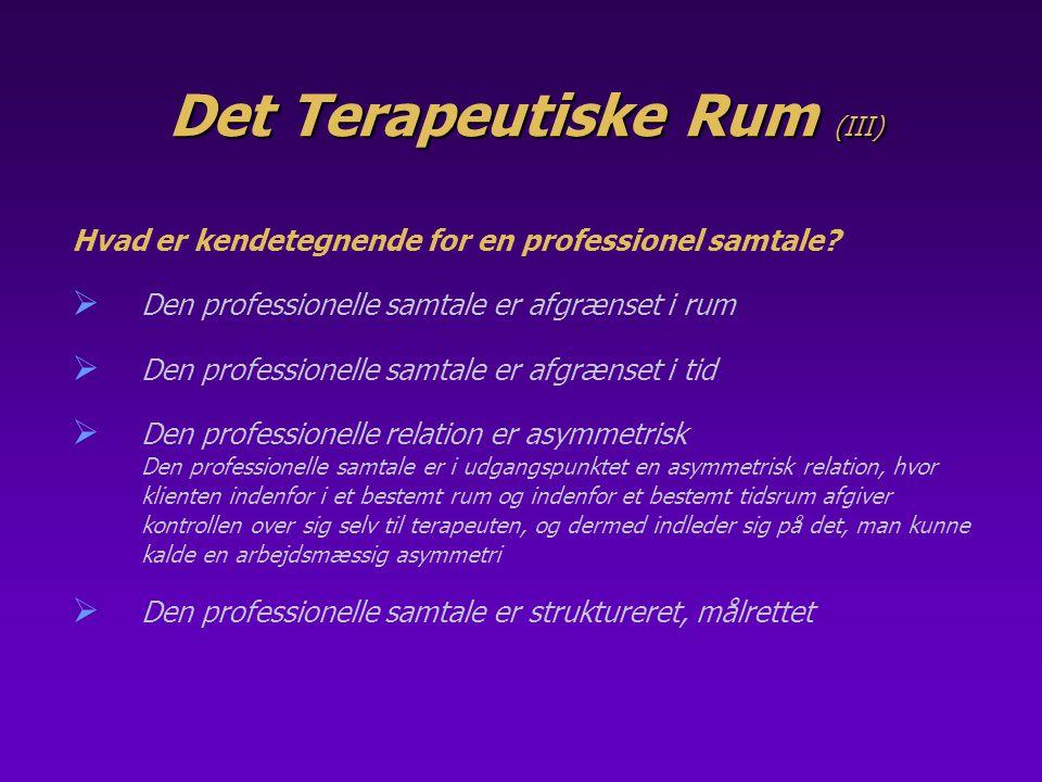 Det Terapeutiske Rum (III)