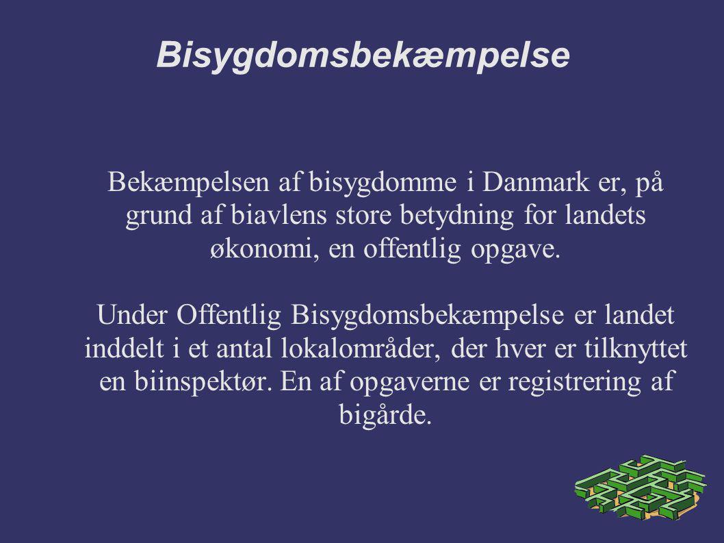 Bisygdomsbekæmpelse Bekæmpelsen af bisygdomme i Danmark er, på grund af biavlens store betydning for landets økonomi, en offentlig opgave.