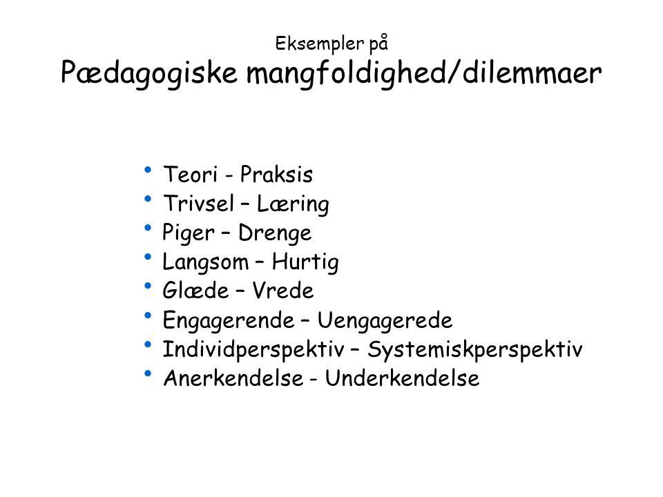 Eksempler på Pædagogiske mangfoldighed/dilemmaer