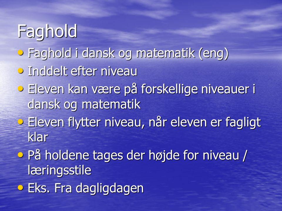 Faghold Faghold i dansk og matematik (eng) Inddelt efter niveau