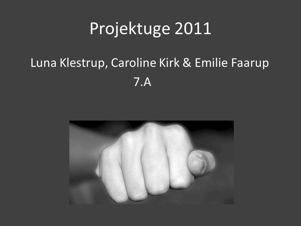 Projektuge 2011 Luna Klestrup, Caroline Kirk & Emilie Faarup 7.A