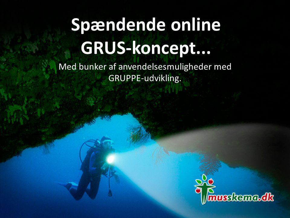 Spændende online GRUS-koncept...