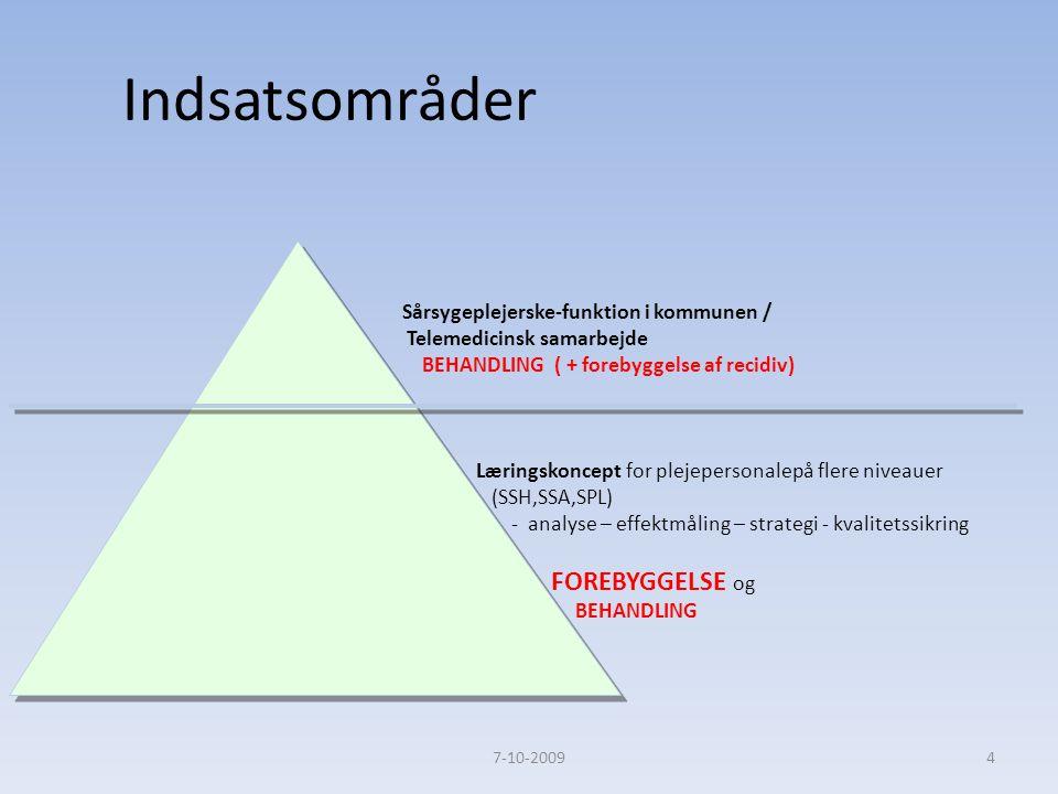 Indsatsområder FOREBYGGELSE og Sårsygeplejerske-funktion i kommunen /