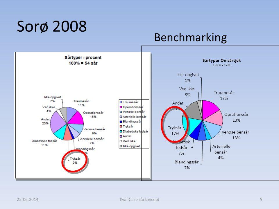 Sorø 2008 Benchmarking Sårtyper Omsårtjek Traumesår 17% Oprationssår