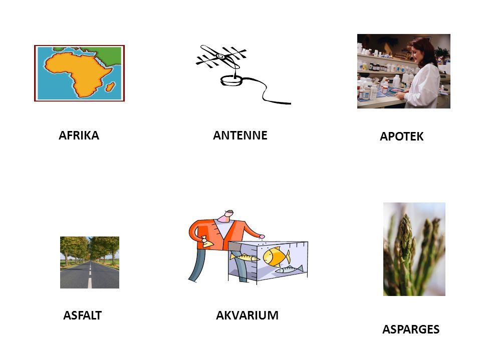 AFRIKA ANTENNE APOTEK ASPARGES ASFALT AKVARIUM