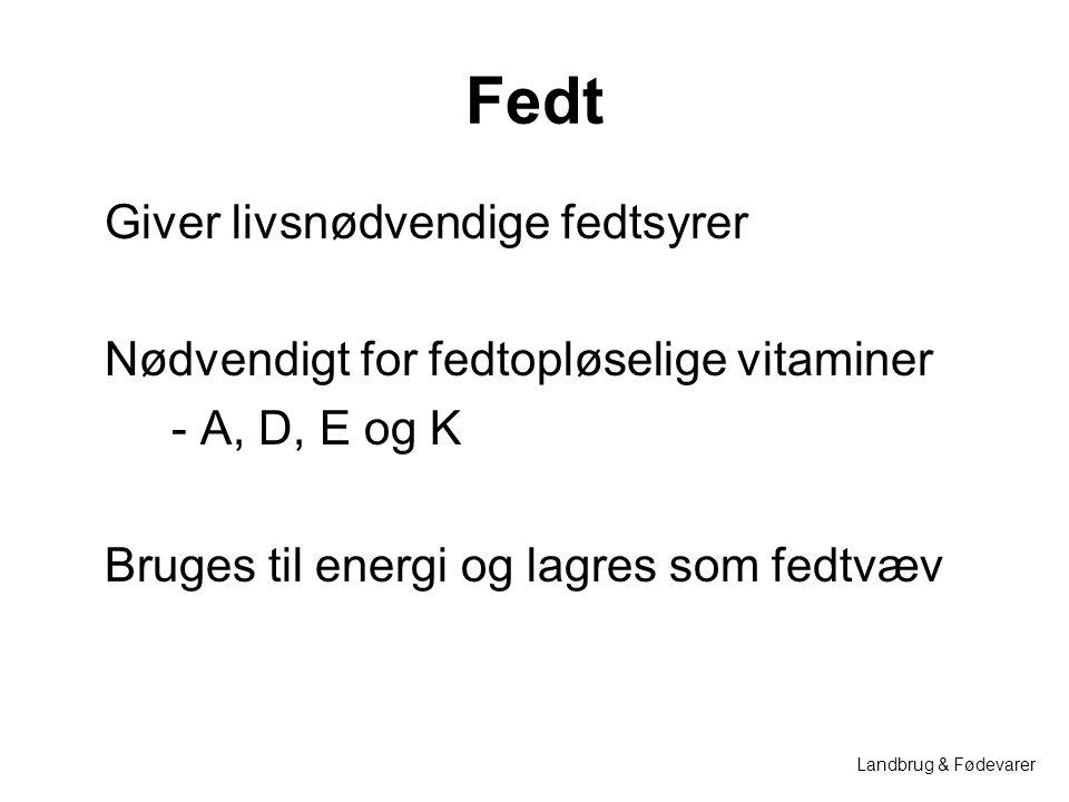 Fedt Giver livsnødvendige fedtsyrer Nødvendigt for fedtopløselige vitaminer - A, D, E og K Bruges til energi og lagres som fedtvæv