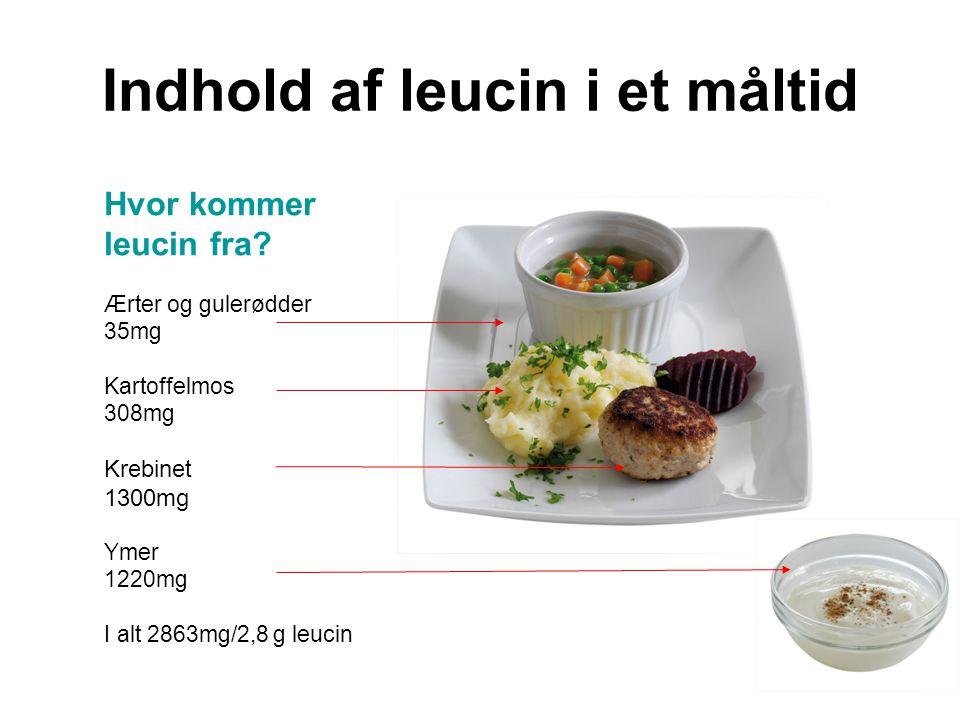 Indhold af leucin i et måltid