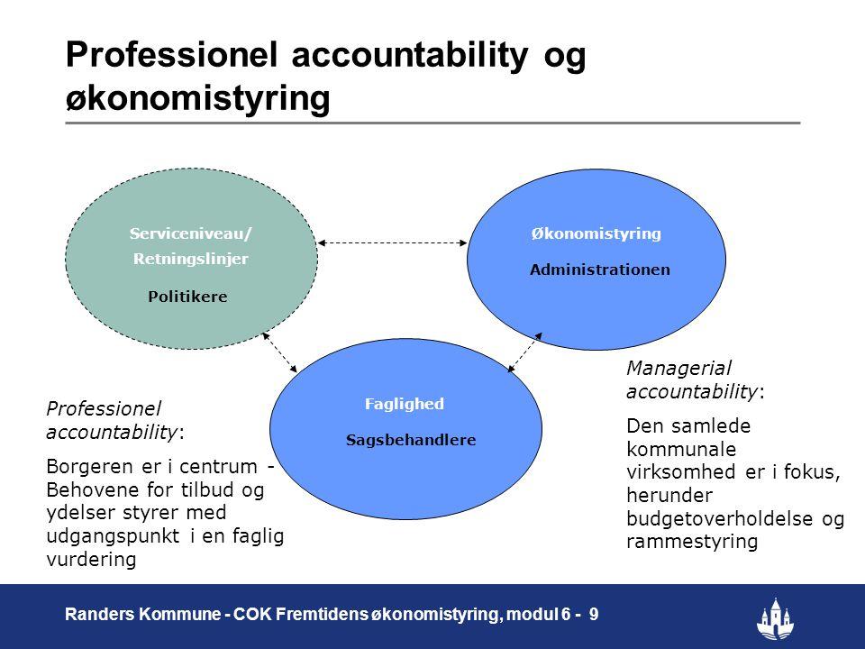 Professionel accountability og økonomistyring