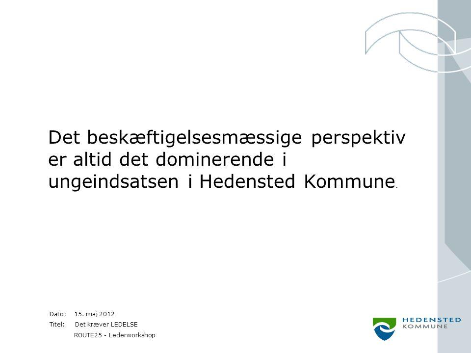 Det beskæftigelsesmæssige perspektiv er altid det dominerende i ungeindsatsen i Hedensted Kommune.