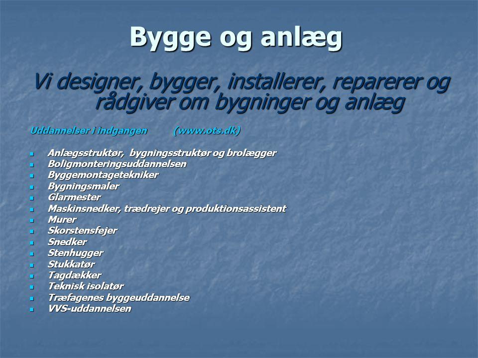 Bygge og anlæg Vi designer, bygger, installerer, reparerer og rådgiver om bygninger og anlæg. Uddannelser i indgangen (www.ots.dk)