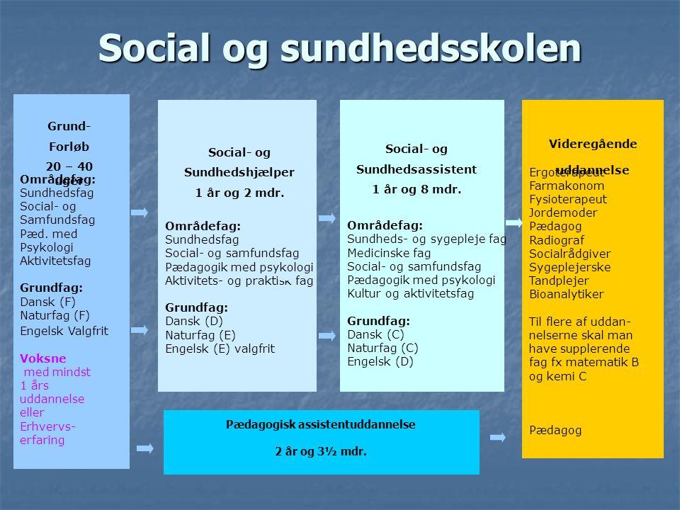 Social og sundhedsskolen