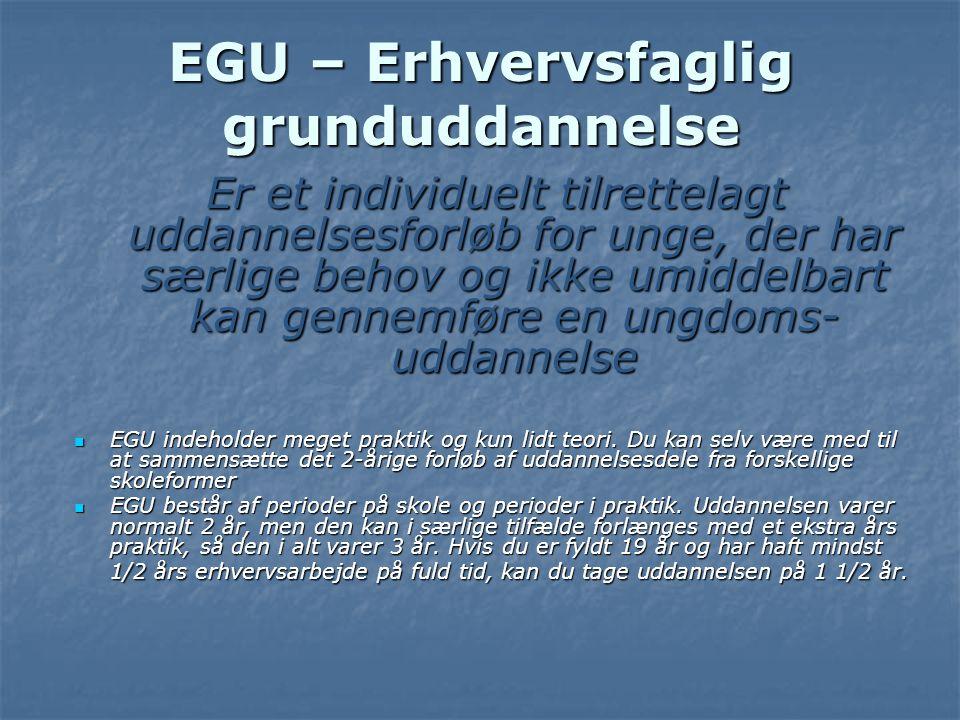 EGU – Erhvervsfaglig grunduddannelse
