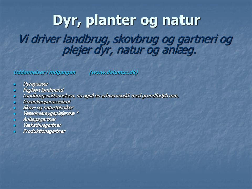 Dyr, planter og natur Vi driver landbrug, skovbrug og gartneri og plejer dyr, natur og anlæg. Uddannelser i indgangen (www.dalumuc.dk)