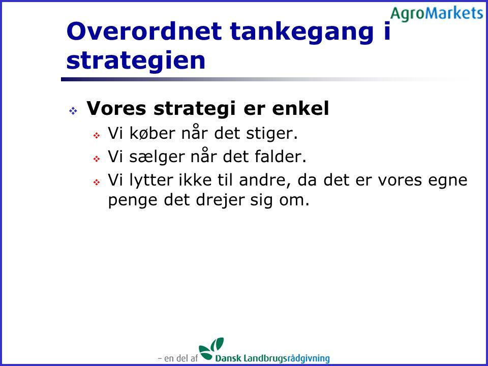 Overordnet tankegang i strategien